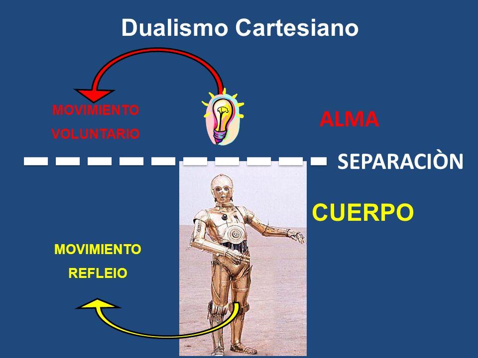 Dualismo Cartesiano ALMA SEPARACIÒN CUERPO MOVIMIENTO VOLUNTARIO