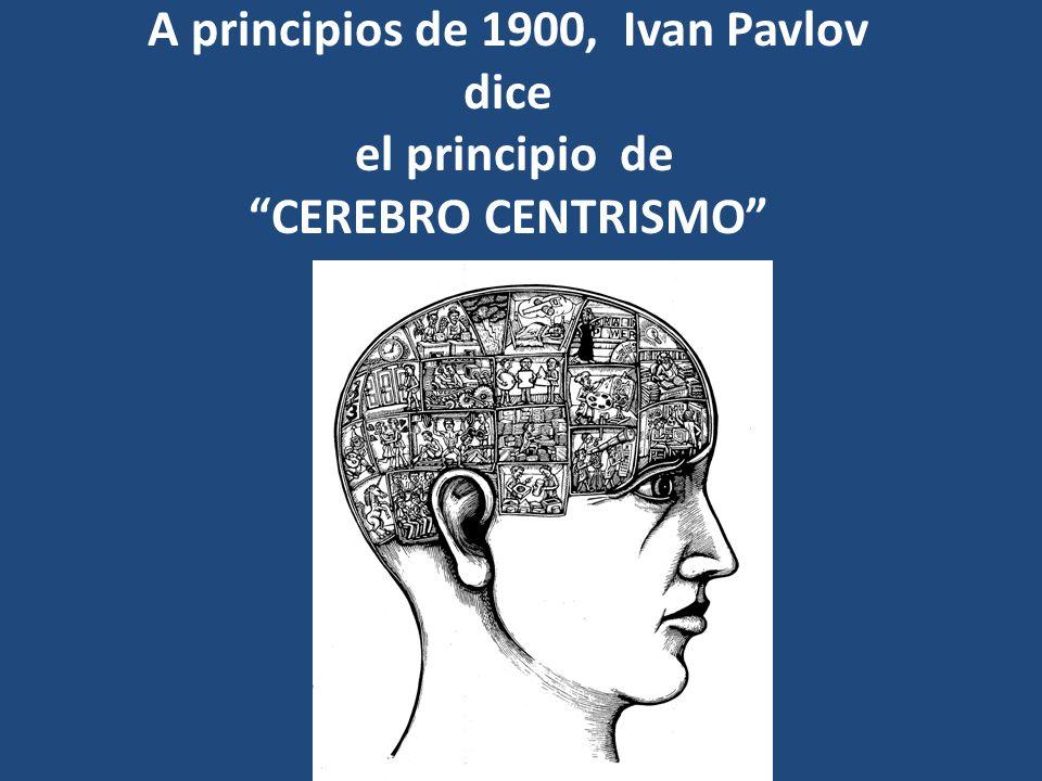 A principios de 1900, Ivan Pavlov dice el principio de CEREBRO CENTRISMO