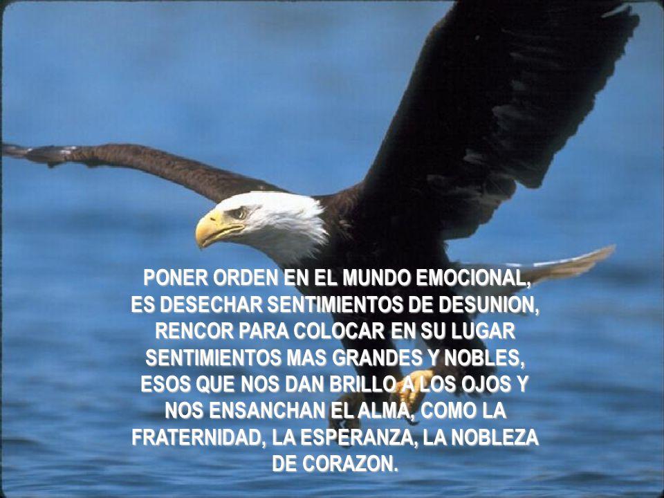 PONER ORDEN EN EL MUNDO EMOCIONAL, ES DESECHAR SENTIMIENTOS DE DESUNION, RENCOR PARA COLOCAR EN SU LUGAR SENTIMIENTOS MAS GRANDES Y NOBLES, ESOS QUE NOS DAN BRILLO A LOS OJOS Y NOS ENSANCHAN EL ALMA, COMO LA FRATERNIDAD, LA ESPERANZA, LA NOBLEZA DE CORAZON.