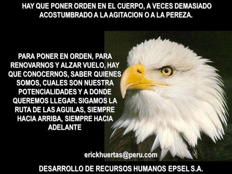 DESARROLLO DE RECURSOS HUMANOS EPSEL S.A.