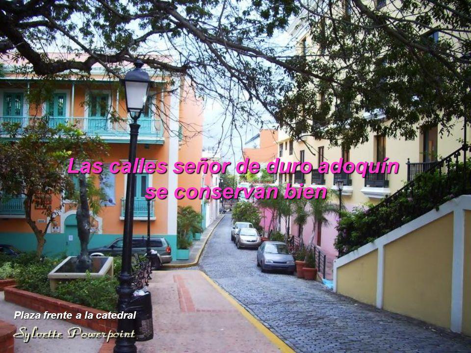 Las calles señor de duro adoquín Plaza frente a la catedral