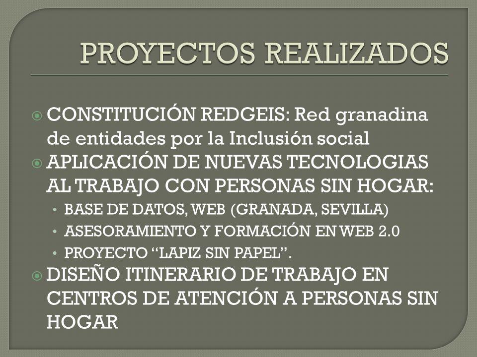 PROYECTOS REALIZADOS CONSTITUCIÓN REDGEIS: Red granadina de entidades por la Inclusión social.