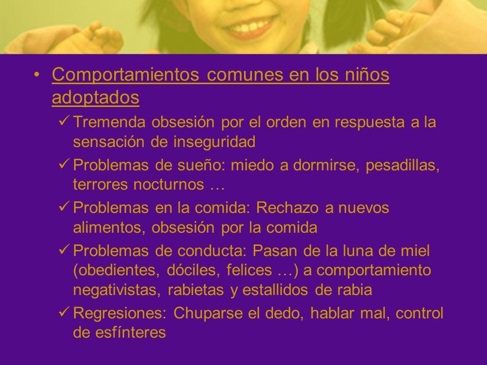 Comportamientos comunes en los niños adoptados