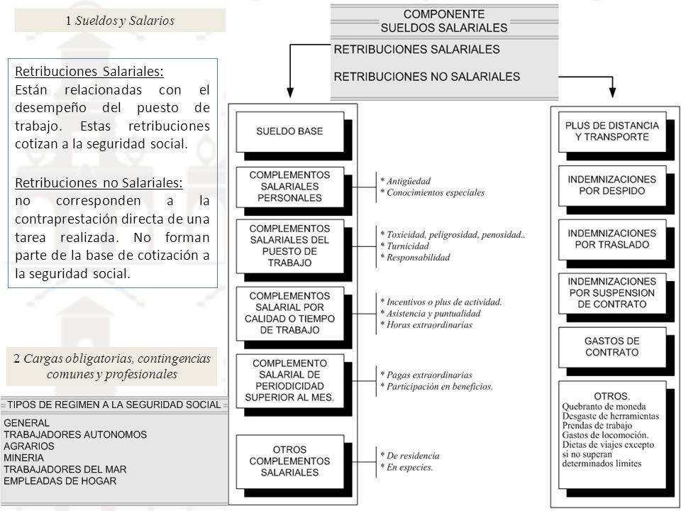 2 Cargas obligatorias, contingencias comunes y profesionales