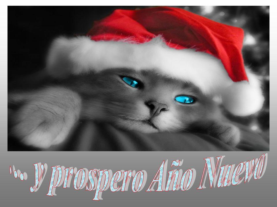 ... y prospero Año Nuevo