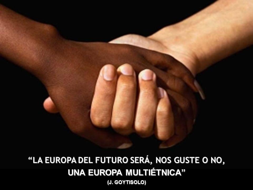 LA EUROPA DEL FUTURO SERÁ, NOS GUSTE O NO, UNA EUROPA MULTIÉTNICA