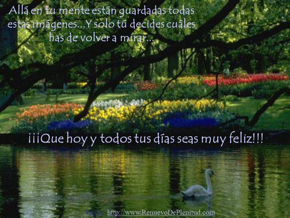 ¡¡¡Que hoy y todos tus días seas muy feliz!!!