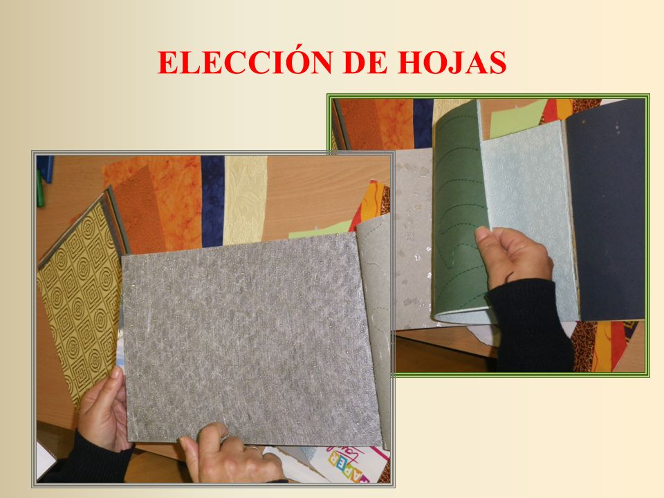 ELECCIÓN DE HOJAS
