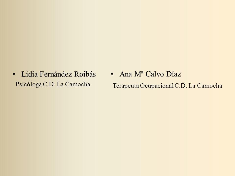 Lidia Fernández Roibás Ana Mª Calvo Díaz