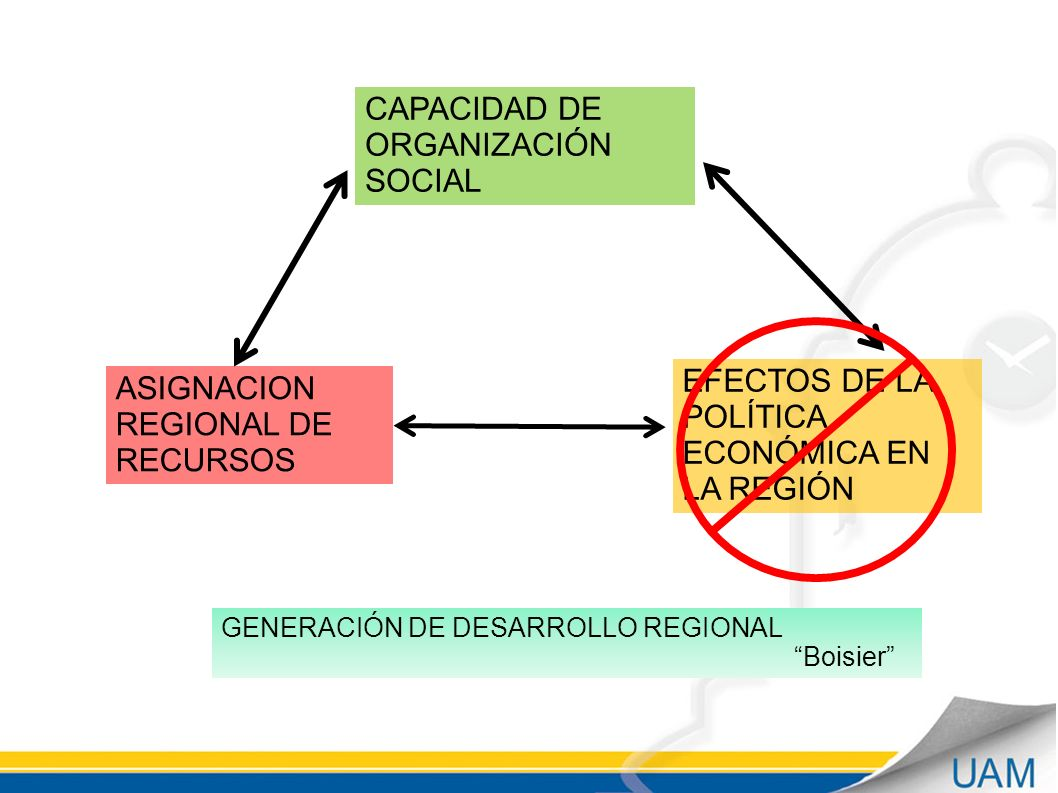 CAPACIDAD DE ORGANIZACIÓN SOCIAL