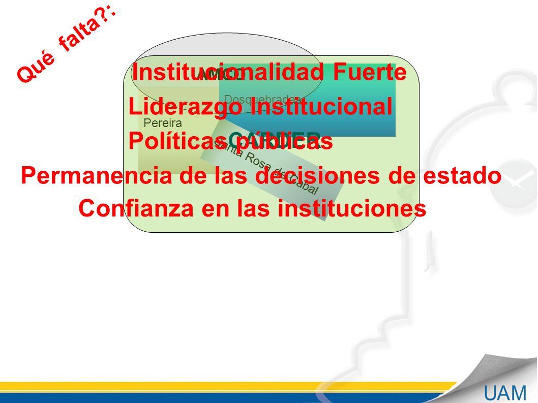 Institucionalidad Fuerte Liderazgo Institucional Políticas públicas