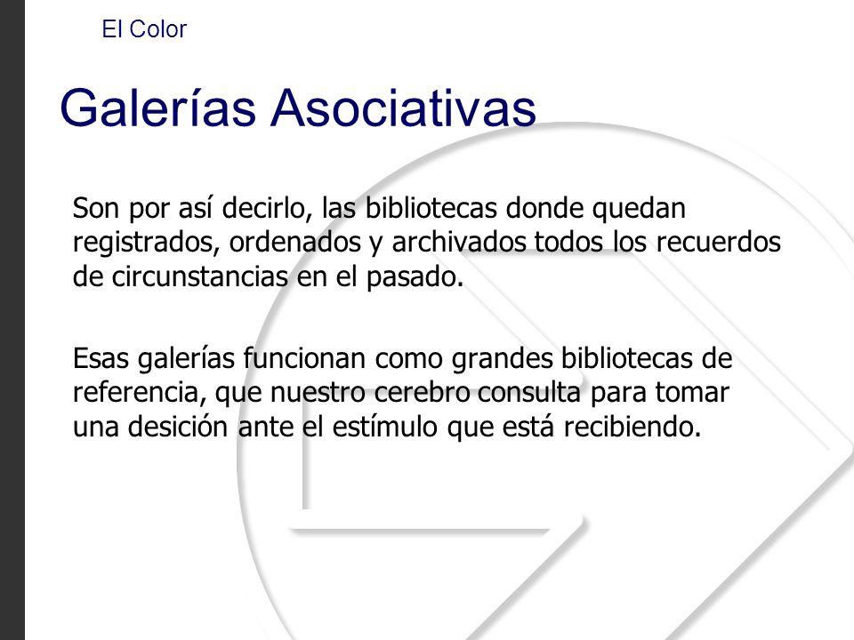 El Color Galerías Asociativas.