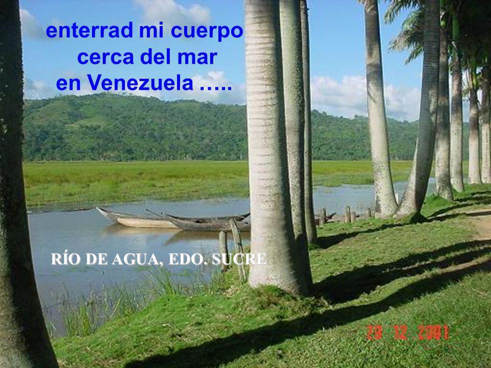cerca del mar en Venezuela …..
