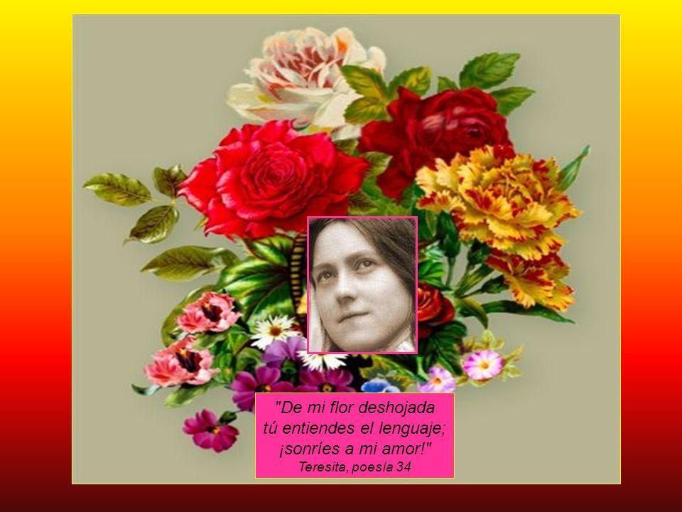 De mi flor deshojada tú entiendes el lenguaje; ¡sonríes a mi amor!