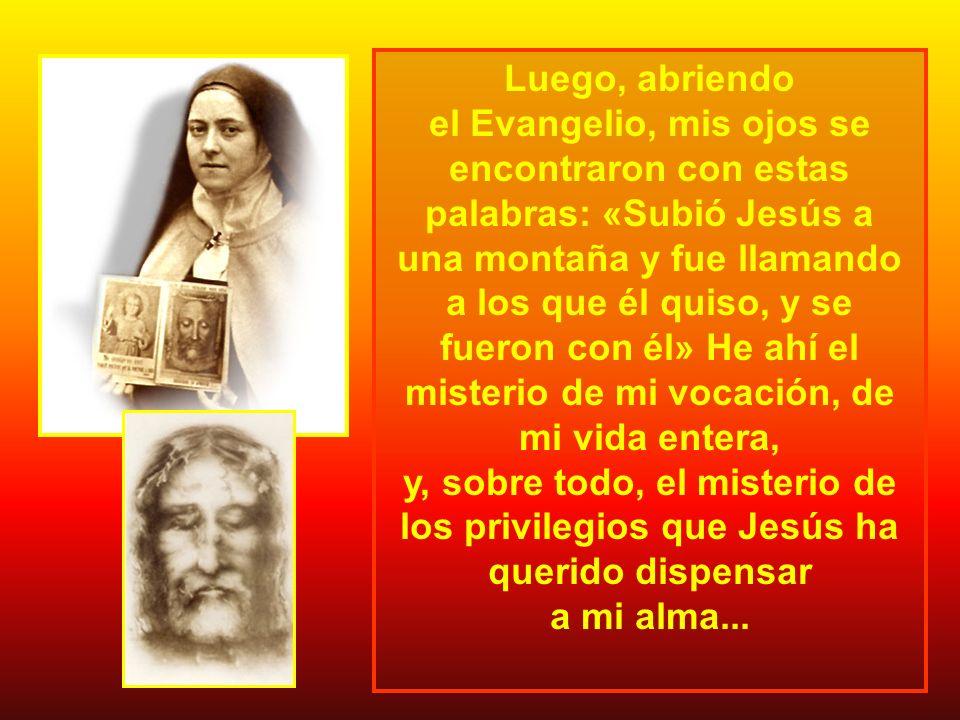 Luego, abriendo el Evangelio, mis ojos se encontraron con estas palabras: «Subió Jesús a.