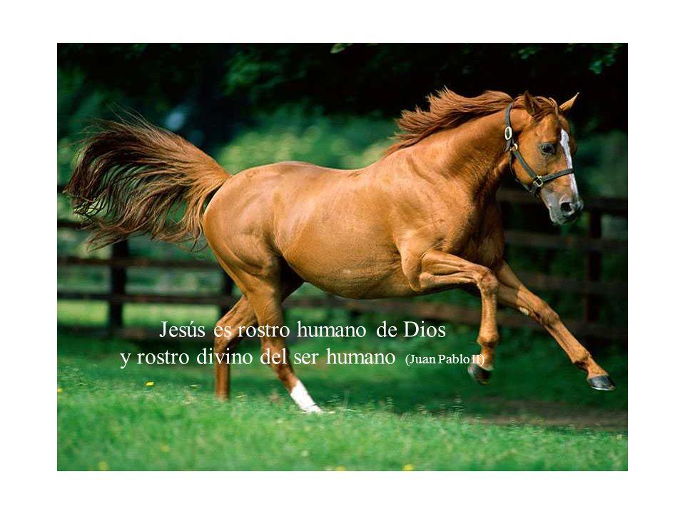 Jesús es rostro humano de Dios y rostro divino del ser humano (Juan Pablo II)