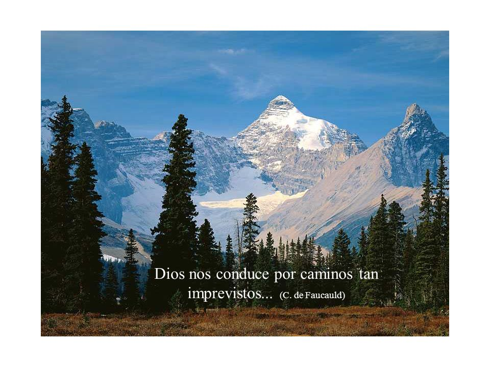Dios nos conduce por caminos tan imprevistos... (C. de Faucauld)