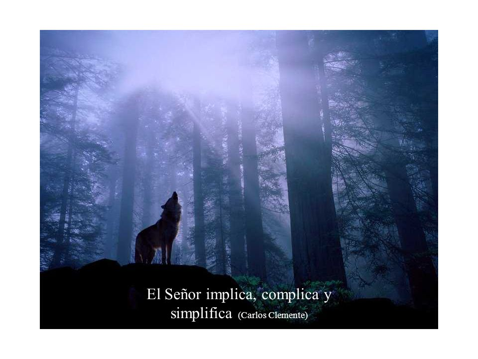 El Señor implica, complica y simplifica (Carlos Clemente)