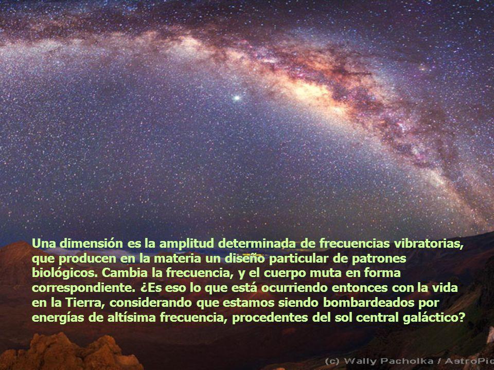 Una dimensión es la amplitud determinada de frecuencias vibratorias, que producen en la materia un diseño particular de patrones biológicos.
