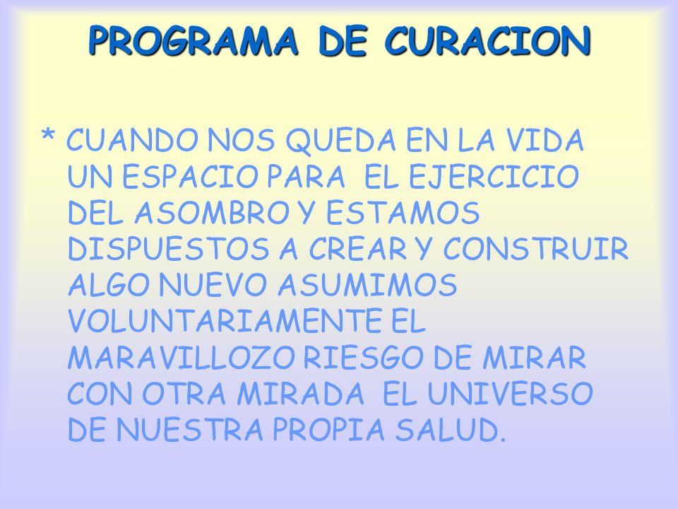 PROGRAMA DE CURACION