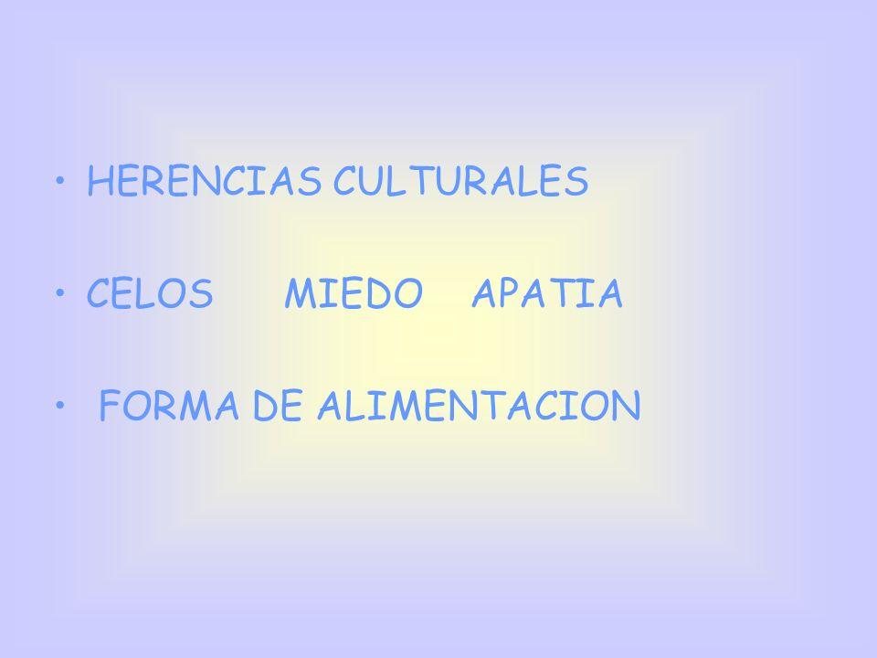 HERENCIAS CULTURALES CELOS MIEDO APATIA FORMA DE ALIMENTACION