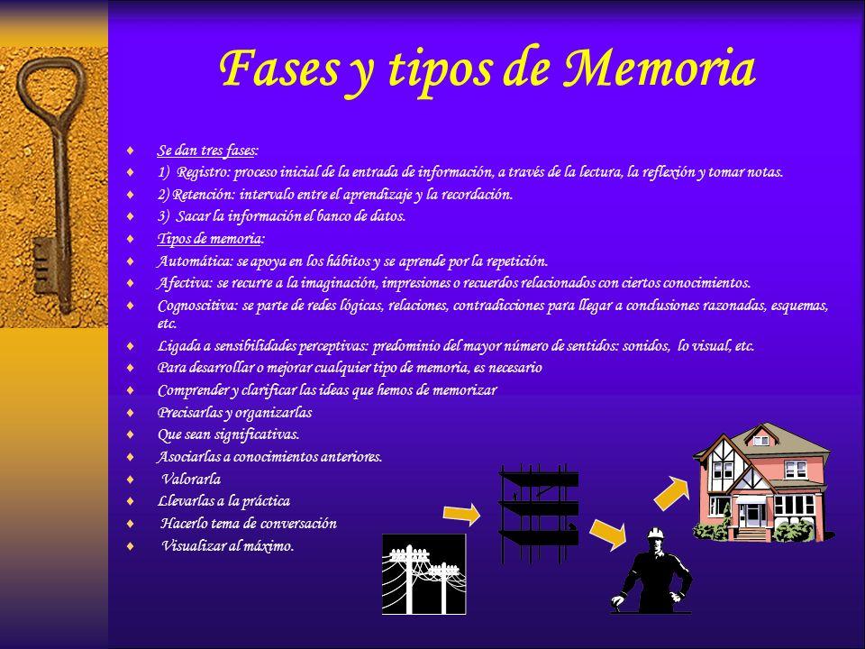 Fases y tipos de Memoria