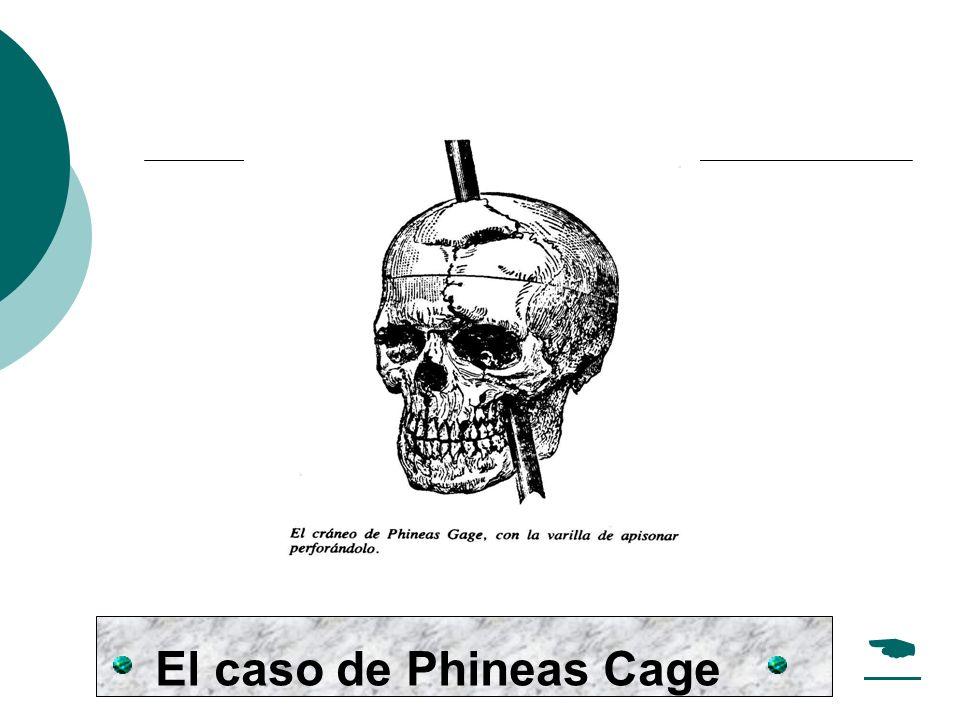 El caso de Phineas Cage 