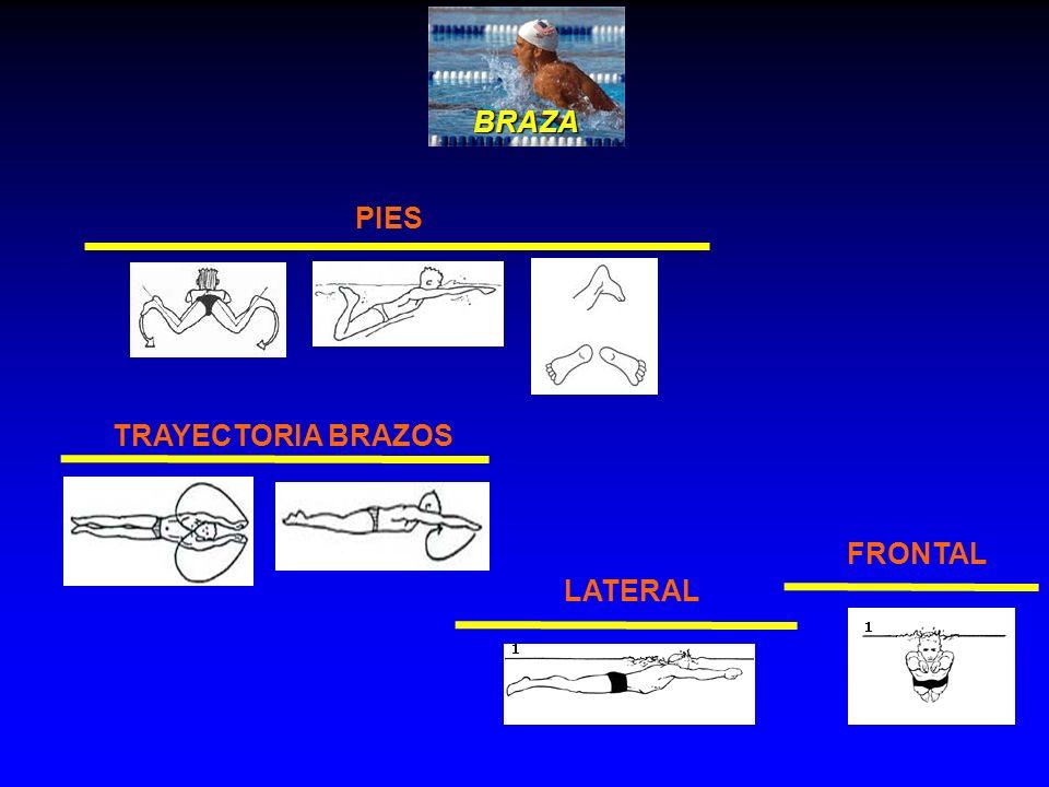 BRAZA PIES TRAYECTORIA BRAZOS FRONTAL LATERAL