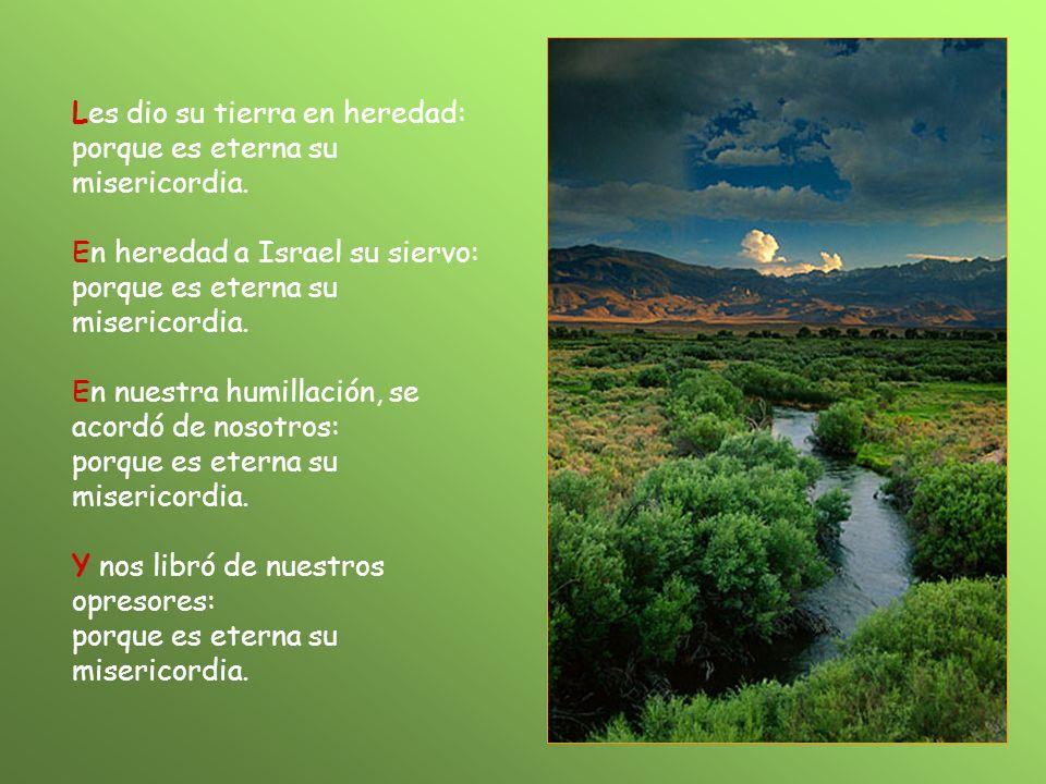 Les dio su tierra en heredad: porque es eterna su misericordia.