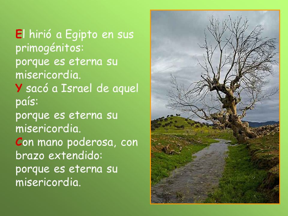 El hirió a Egipto en sus primogénitos: porque es eterna su misericordia.