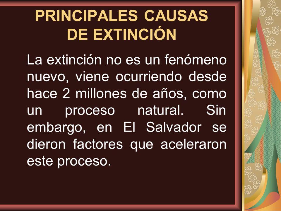 PRINCIPALES CAUSAS DE EXTINCIÓN