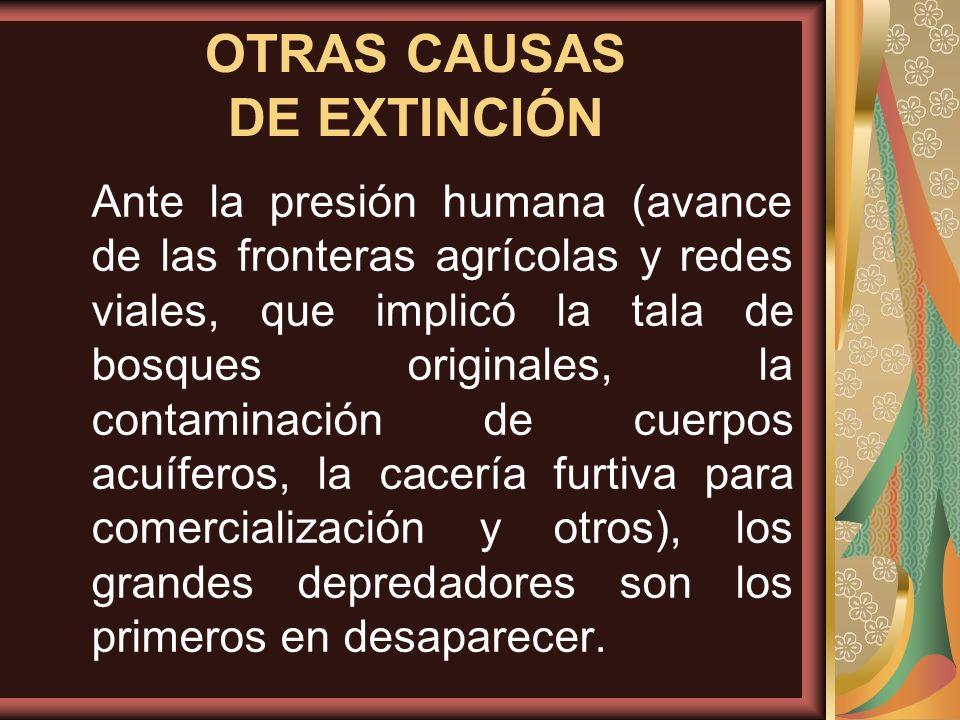 OTRAS CAUSAS DE EXTINCIÓN
