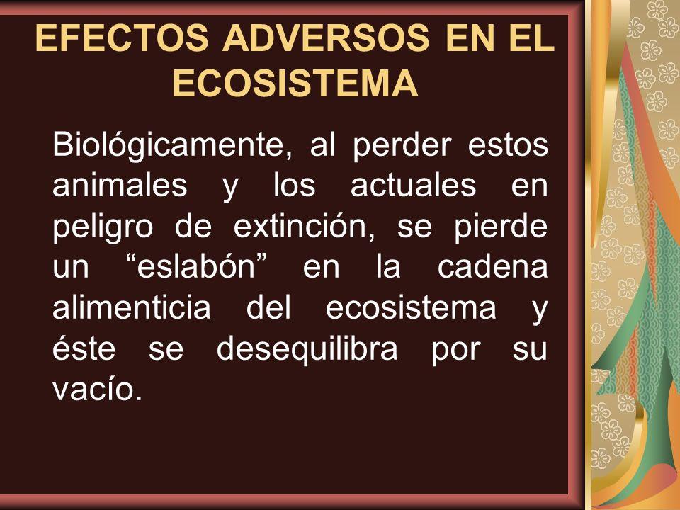 EFECTOS ADVERSOS EN EL ECOSISTEMA
