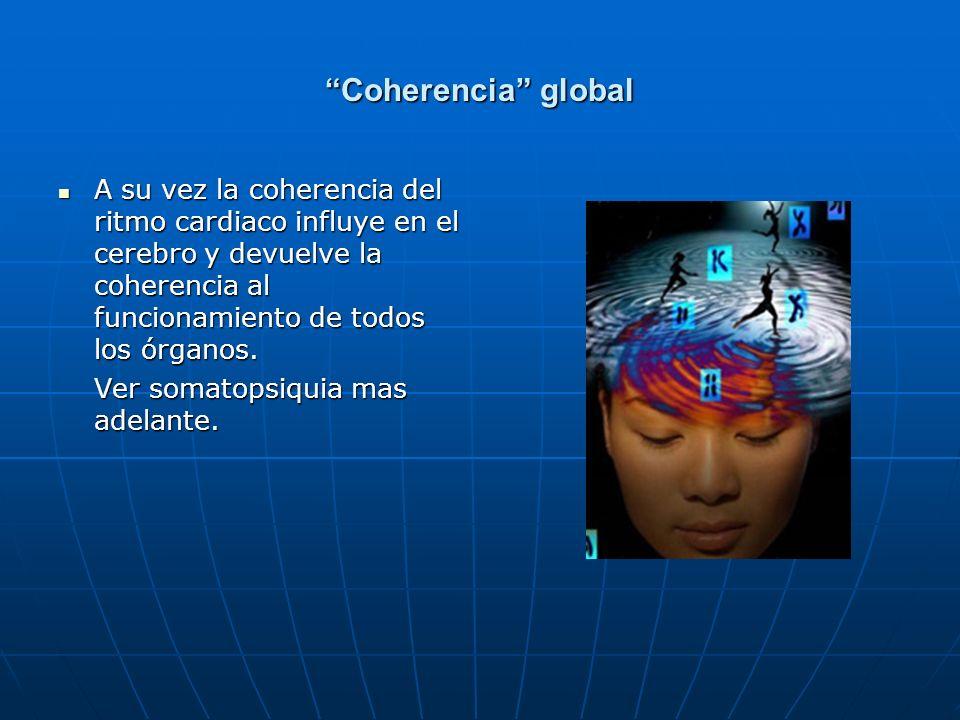 Coherencia global A su vez la coherencia del ritmo cardiaco influye en el cerebro y devuelve la coherencia al funcionamiento de todos los órganos.