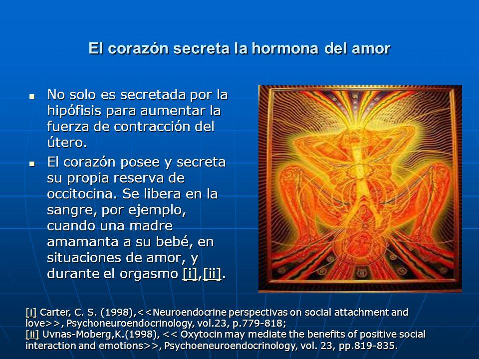 El corazón secreta la hormona del amor