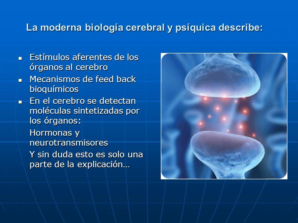 La moderna biología cerebral y psíquica describe: