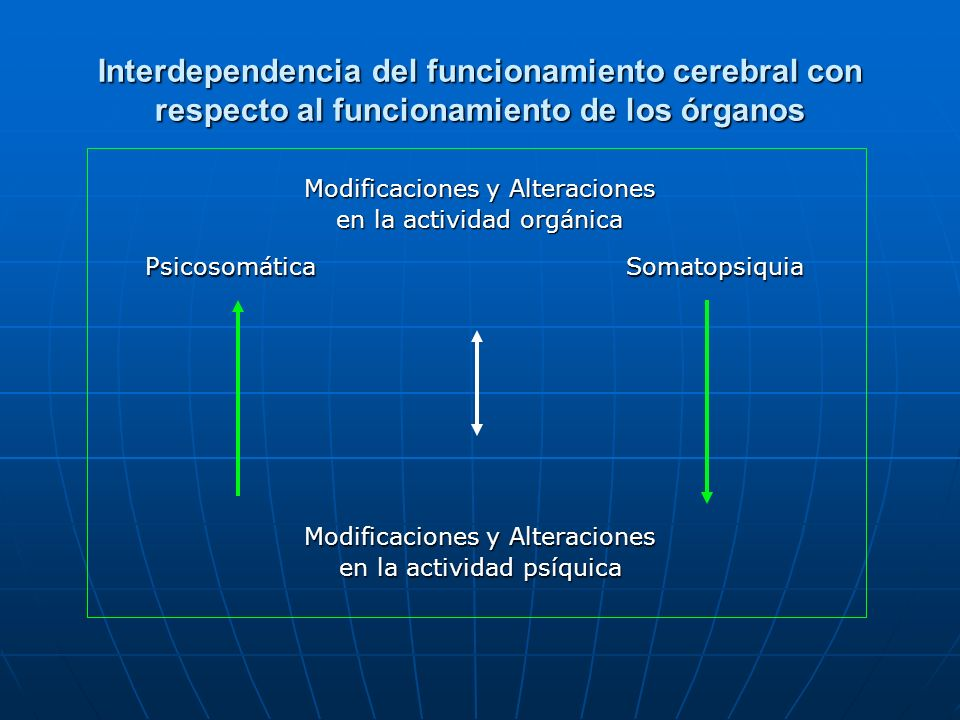Interdependencia del funcionamiento cerebral con respecto al funcionamiento de los órganos