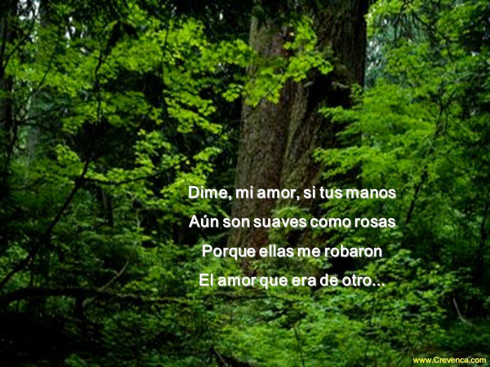 Dime, mi amor, si tus manos Aún son suaves como rosas