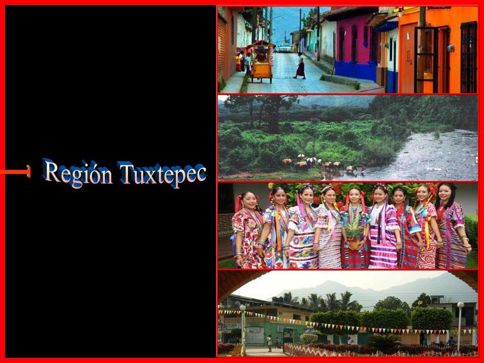 Región Tuxtepec E