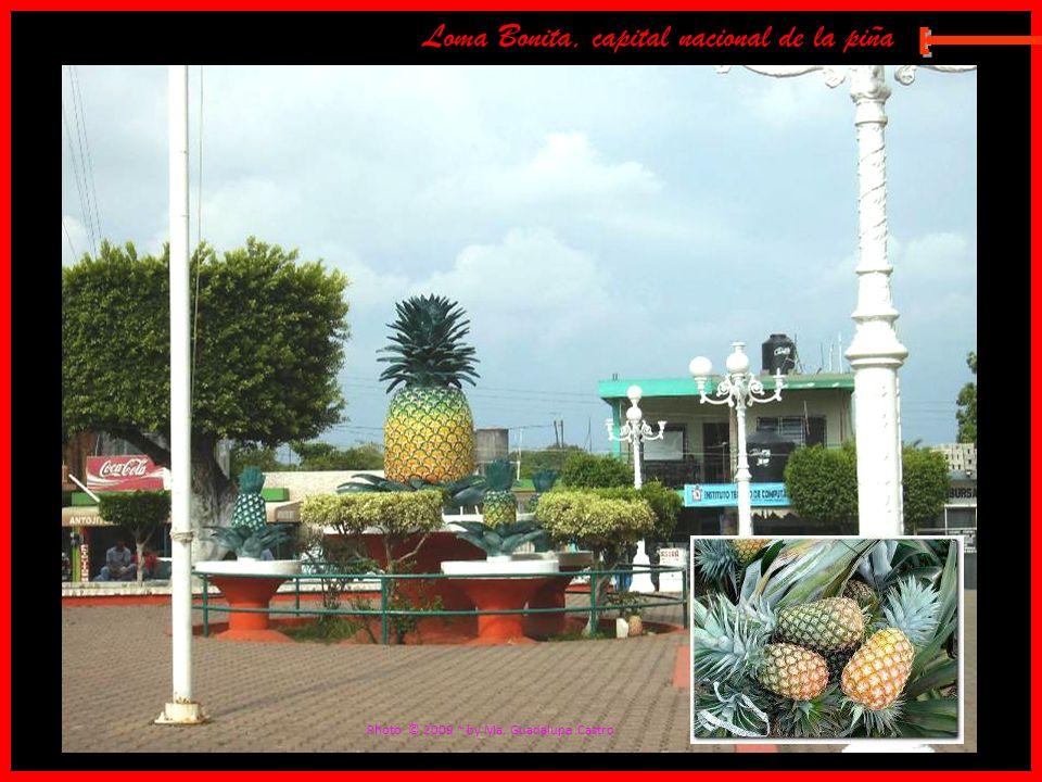E Loma Bonita, capital nacional de la piña