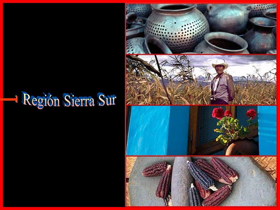 Región Sierra Sur E