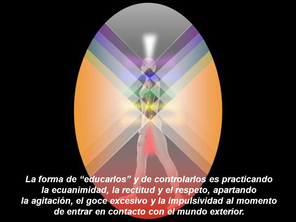 La forma de educarlos y de controlarlos es practicando la ecuanimidad, la rectitud y el respeto, apartando la agitación, el goce excesivo y la impulsividad al momento de entrar en contacto con el mundo exterior.