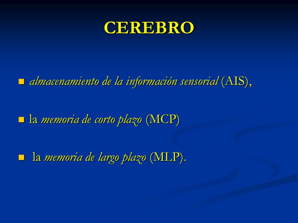 CEREBRO almacenamiento de la información sensorial (AIS),