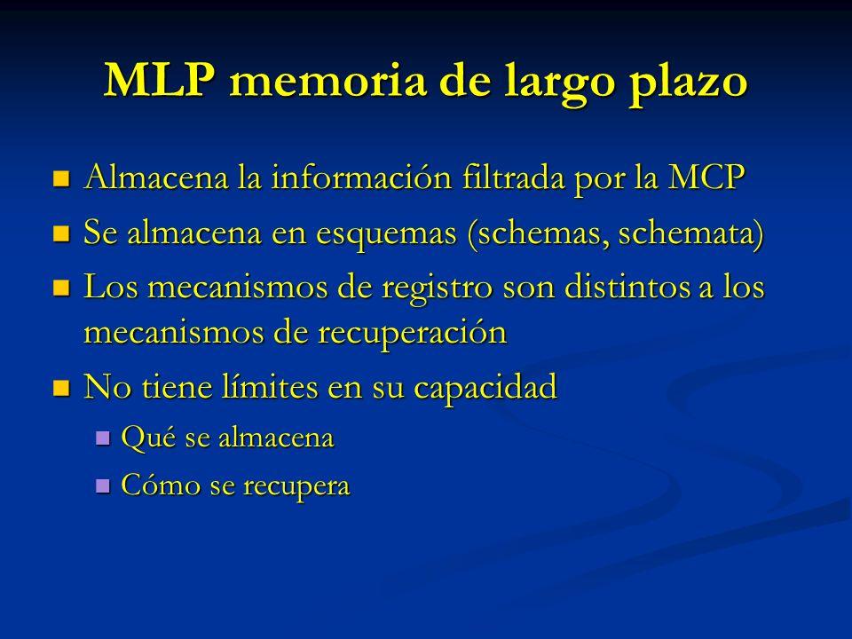 MLP memoria de largo plazo