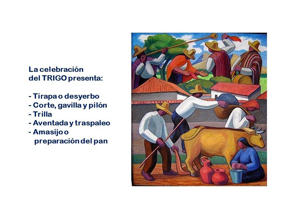 La celebración del TRIGO presenta: - Tirapa o desyerbo. - Corte, gavilla y pilón. - Trilla. - Aventada y traspaleo.