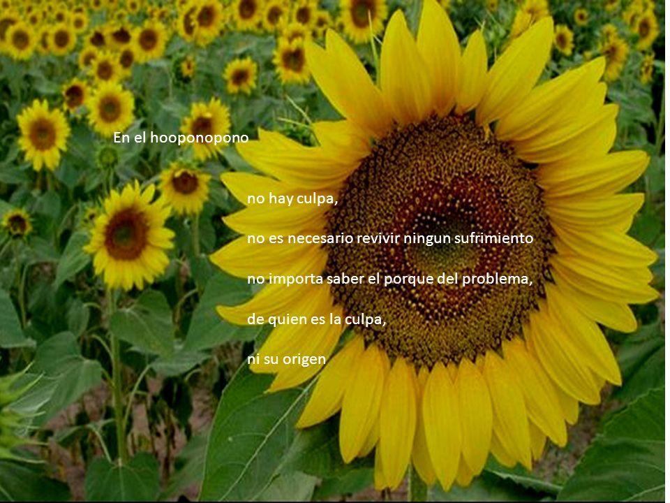 En el hooponopono no hay culpa, no es necesario revivir ningun sufrimiento. no importa saber el porque del problema,