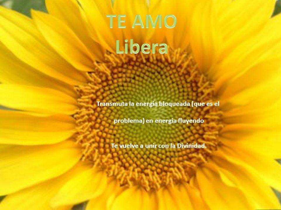 TE AMO Libera Transmuta la energia bloqueada (que es el