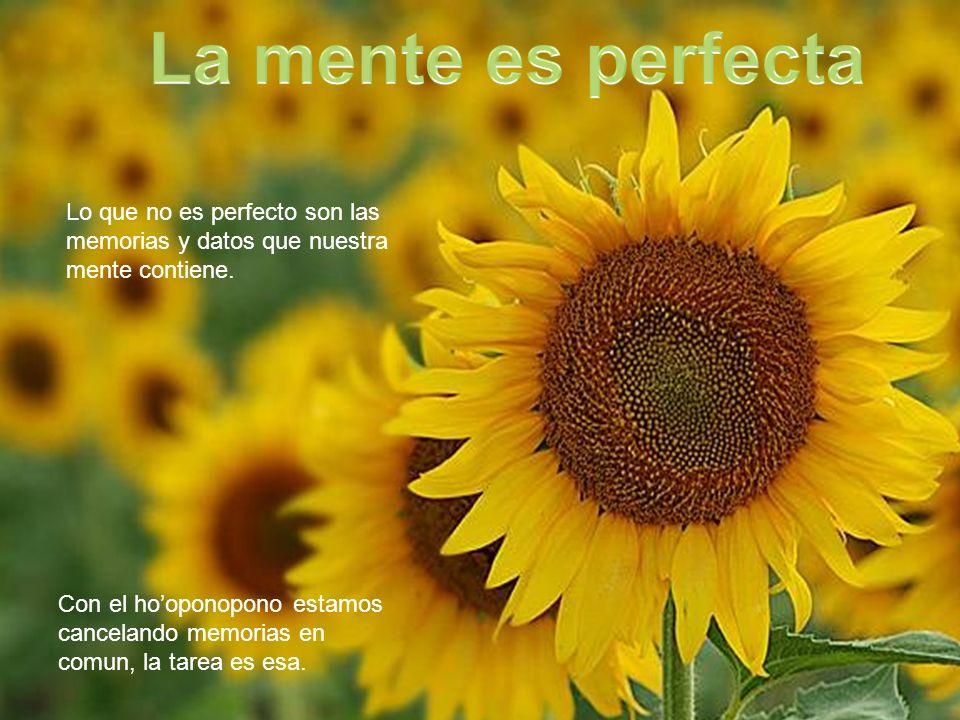La mente es perfecta Lo que no es perfecto son las memorias y datos que nuestra mente contiene.
