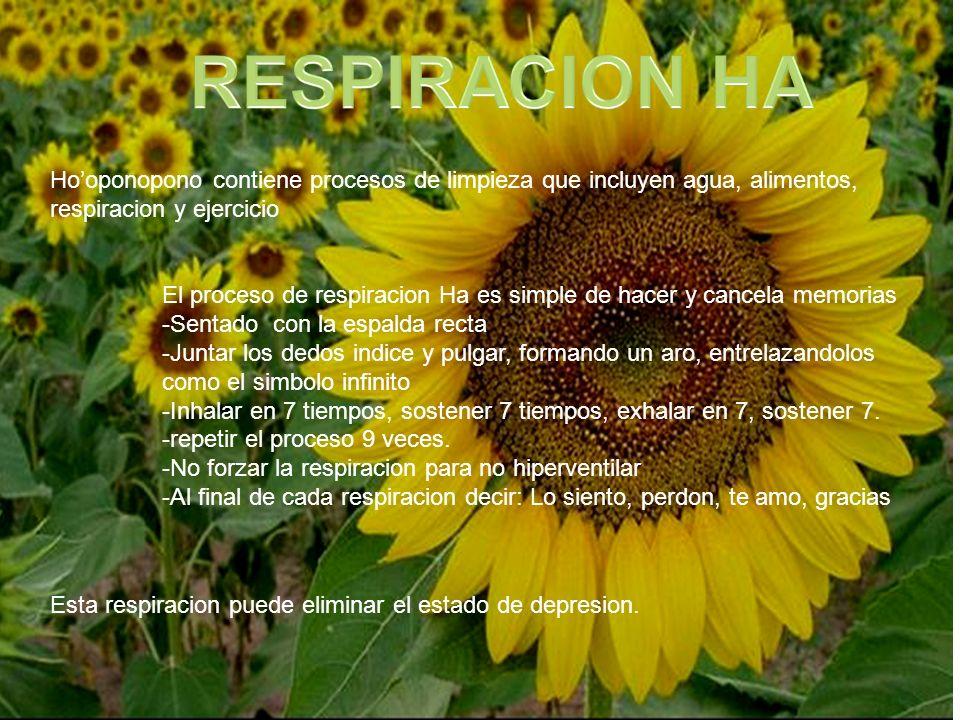 RESPIRACION HA Ho'oponopono contiene procesos de limpieza que incluyen agua, alimentos, respiracion y ejercicio.