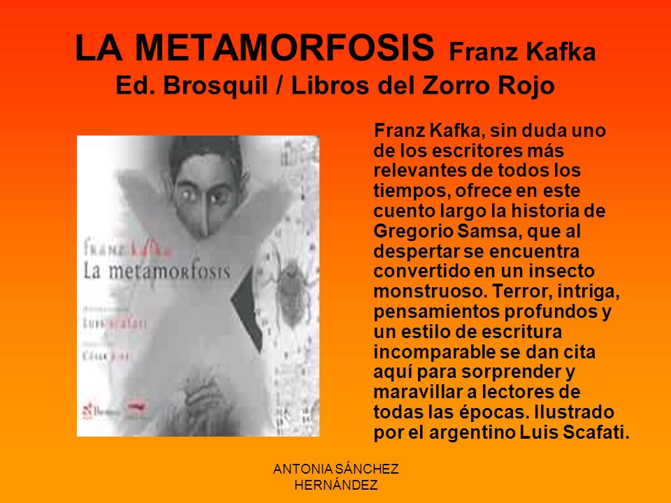 LA METAMORFOSIS Franz Kafka Ed. Brosquil / Libros del Zorro Rojo
